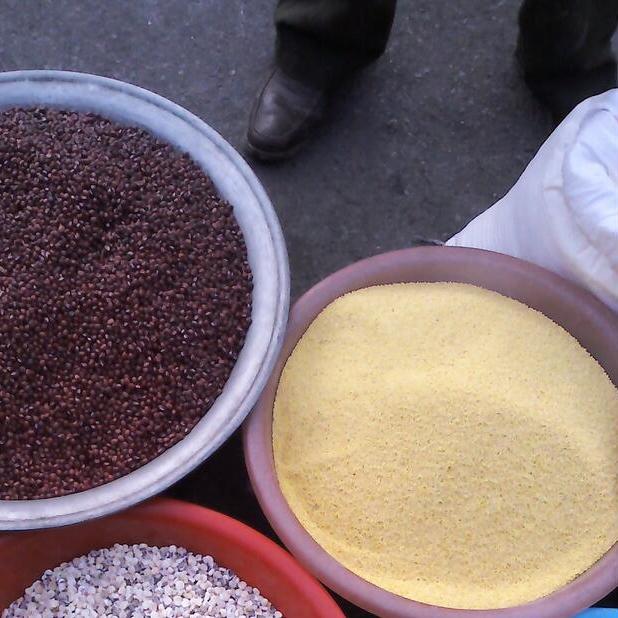 优质黑芝麻 批发粮油作物 优质货源 天然养生黑芝麻