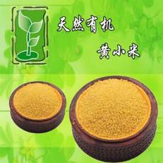 五谷杂粮 厂家直供 养生杂粮 黄小米 朝阳小米