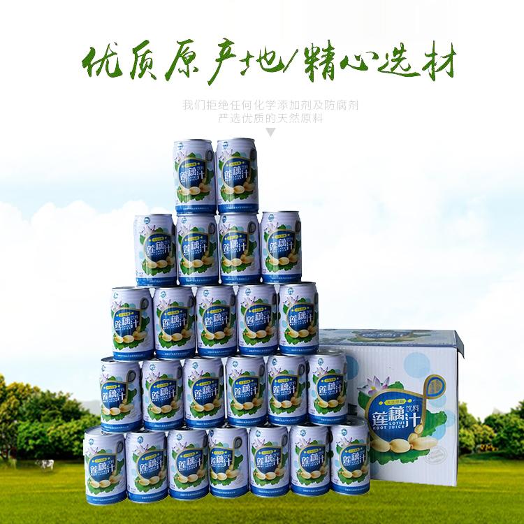东湖四洋 310ml*12 310ml*24礼盒装莲藕汁 包邮