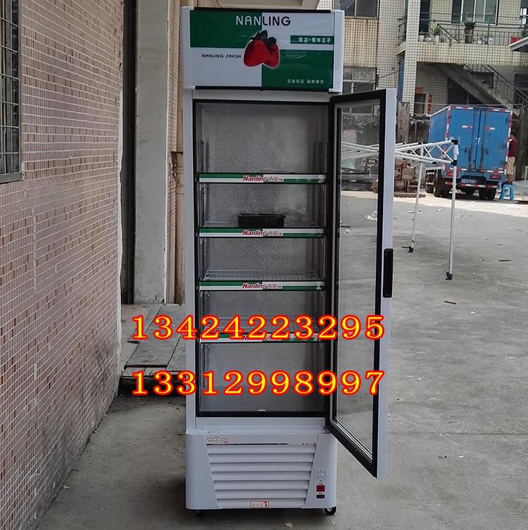 南凌冷柜 LG-238F LG-280F LG-338F 啤酒饮料柜立式单门直冷展示柜
