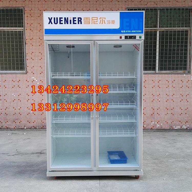 雪尼尔冷柜 双门饮料啤酒展示柜 商用可乐汽水展示冷藏柜LC-1200F