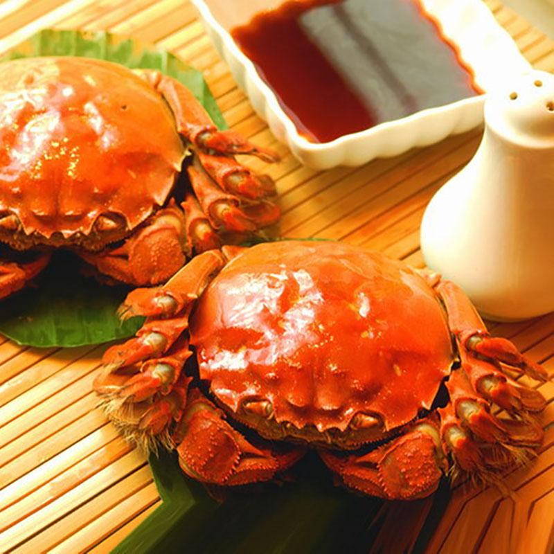 愚蠢的螃蟹