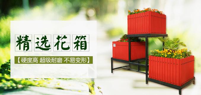 中国花箱交易网