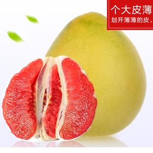 平和琯溪红肉蜜柚  5000斤起
