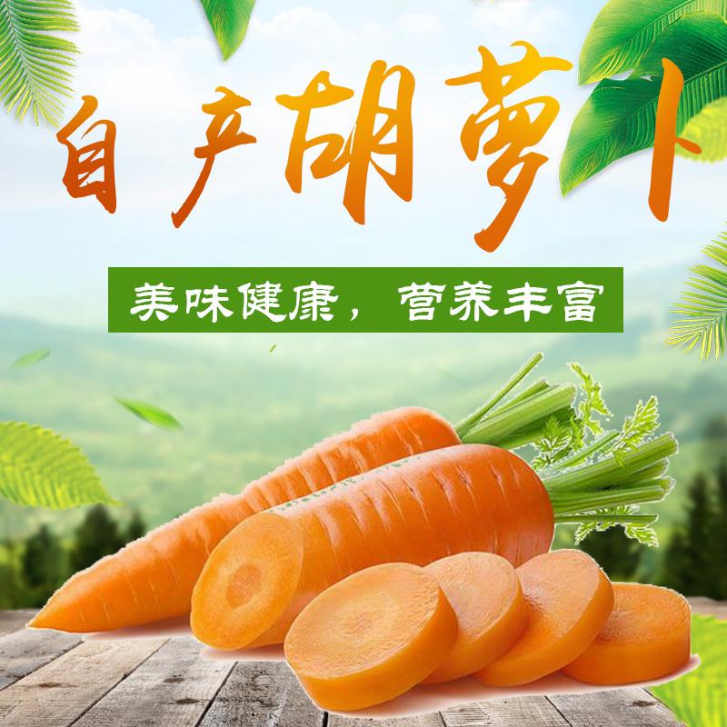应海 新鲜胡萝卜 农家自种非转基因胡萝卜 辅食榨汁20斤包邮