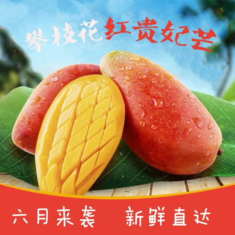 攀枝花欣民盛红贵妃精品芒果5斤—8斤新鲜芒果树上熟