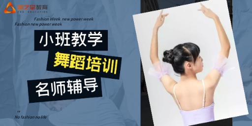 重庆比较专业的舞蹈培训大概需要多少钱 来电咨询 新艺堂教育培训供应