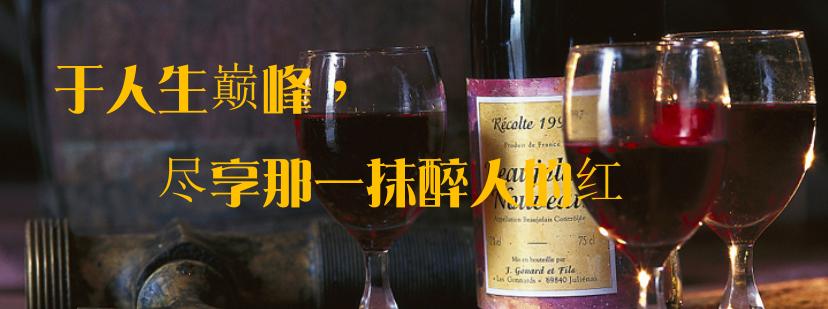 供应 法国红酒斗牛士葡萄酒