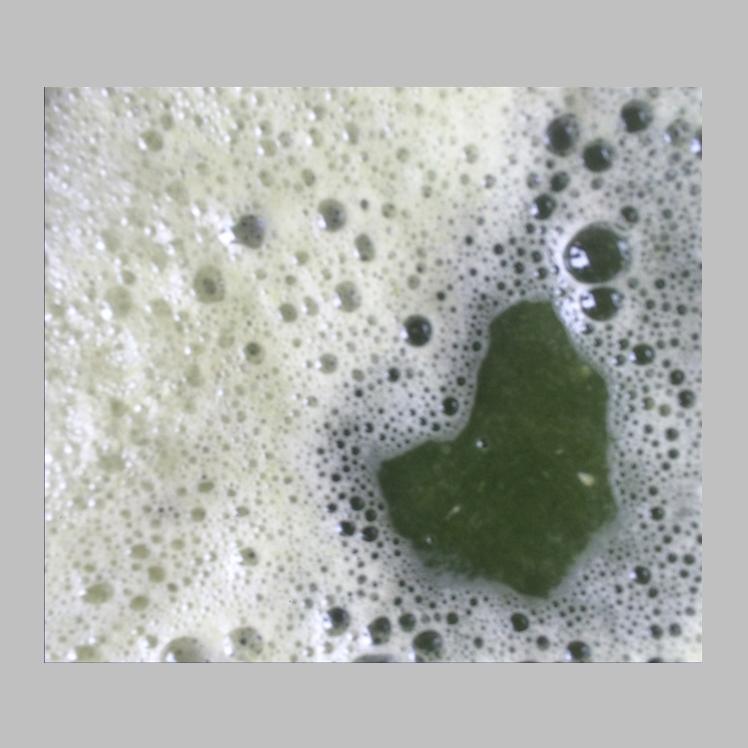 橙子专用粉碎榨汁机 新疆葡萄榨汁机 螺旋榨汁机厂家