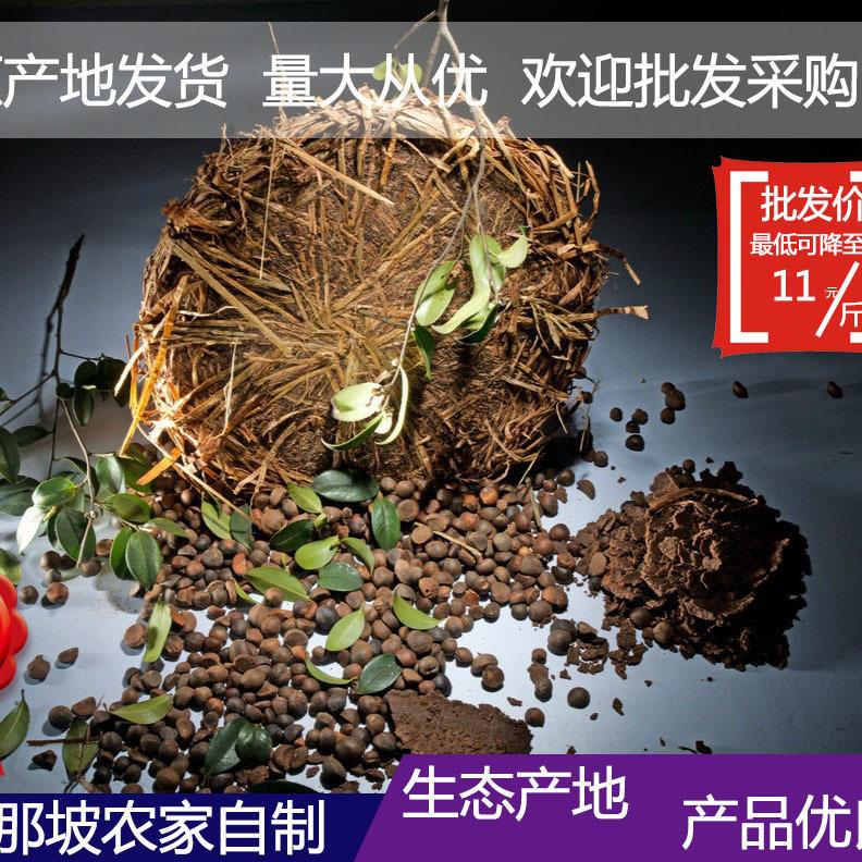 廣西那坡縣特產 山茶籽 榨油原料 帶殼山茶籽